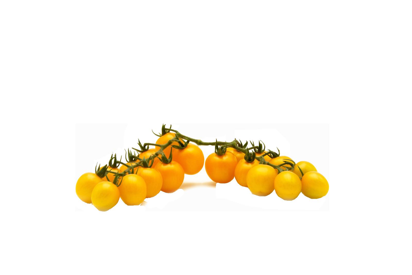 pomodori gialli PNG